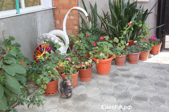 Пансионат на Кропоткина- фото 24